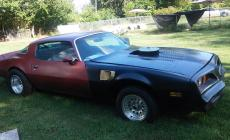 77 Pontiac Firebird main photo
